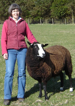 Dunja Roberts with Zwartbles